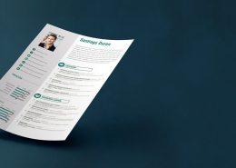 CV Resume Service
